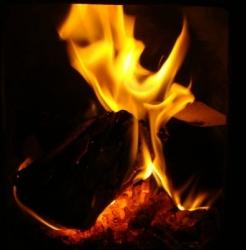 Briquettes burning like logs